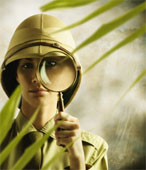 audit_detective_WBC_Baltimore